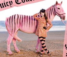 Couture,horse,juicy,juicy,couture,stripes,zebra-21bfc0964e844d397d621bffaa08ac76_m